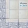 ASK LB0012 Marble Effect border tiles
