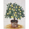 ASK 1397 Portuguese tiles mural fruits