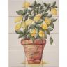 ASK 1676 lemons vase tiles panel