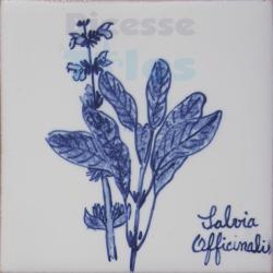 ARH010 Kitchen Aromatic Herbs