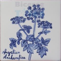 ARH014 Kitchen Aromatic Herbs