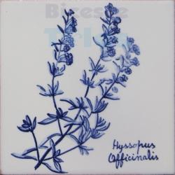ARH016 Kitchen Aromatic Herbs