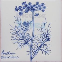 ARH019 Kitchen Aromatic Herbs