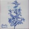 ARH026 Kitchen Aromatic Herbs